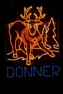 Reindeer Donner 2013